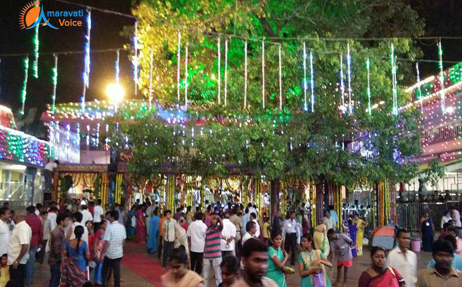 dasara lighting vijayawada 6