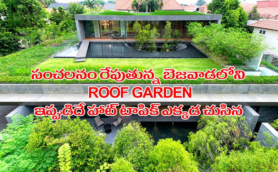 Roof Garden Vja 03042016
