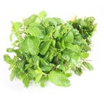 Mint leaves Vegetable Price